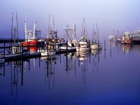 Still Boats, Yaquina Bay, Newport, Oregon
