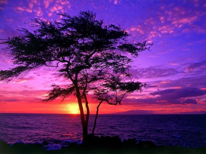 beautiful-pictures-of-hawaiihawaii-beautiful-sunset---free-pictures-hd-photos-l15wte0s