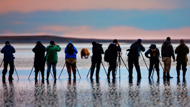 Photographers shooting pictures of brown bears in Lake Clark National Park and Preserve, Alaska 20140819