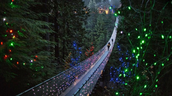 Capilano Suspension Bridge in Vancouver, British Columbia, Canada 20141227