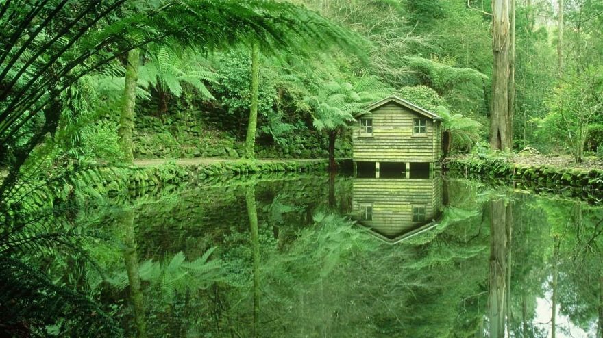 Alfred Nicholas Memorial Gardens in the Dandenong Ranges, Victoria, Australia 20140704