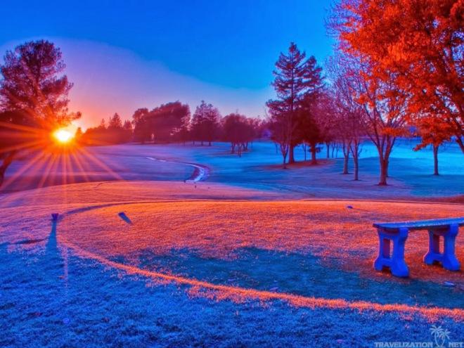 beautiful-winter-scene-in-park