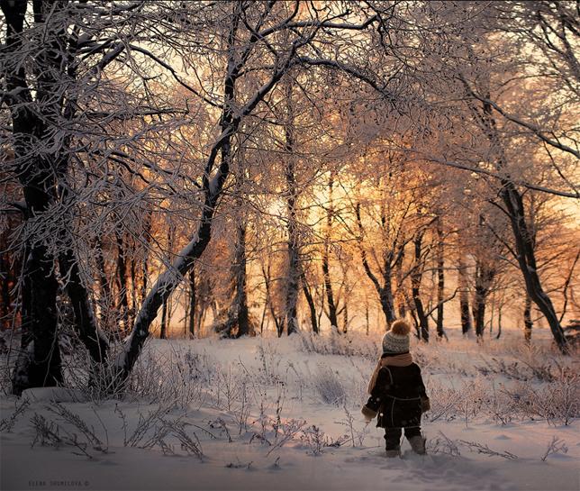 elena-shumilova-boy-snowy-forest