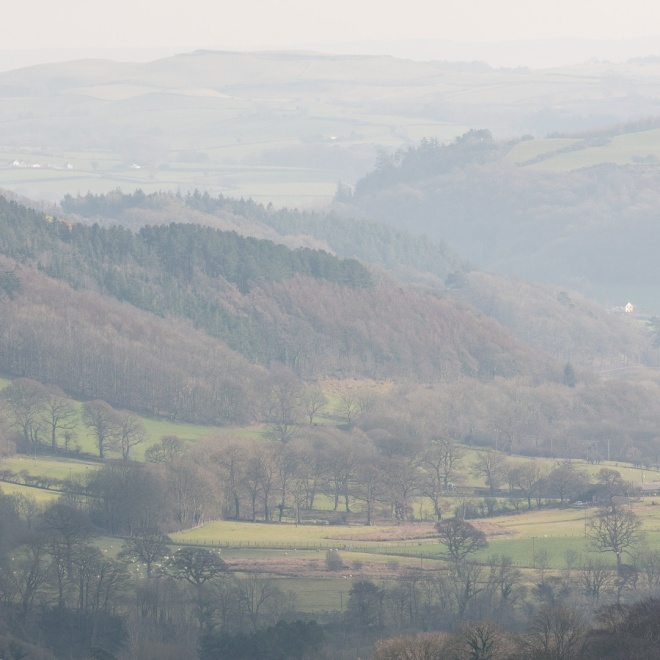 Nant Paith valley, Aberystwyth, Ceredigion.